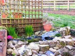 Gwynfryn Cottage - 912385 - photo 8