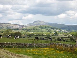 Penyghent View - 914777 - photo 17