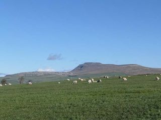 Penyghent View - 914777 - photo 19