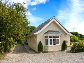 Bedw Arian Cottage - 916021 - photo 1