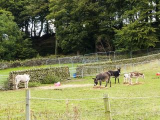 The Old Piggery - 916394 - photo 17