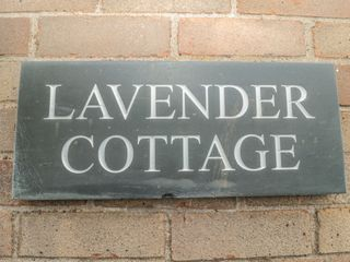 Lavender Cottage - 924847 - photo 4