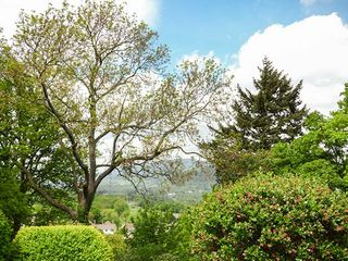 Treetops - 927130 - photo 34