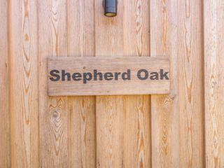 Shepherd Oak - 932158 - photo 4