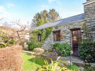 Cwm Caeth Cottage - 933979 - photo 1