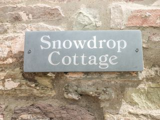 Snowdrop Cottage - 949428 - photo 4