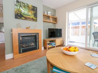 ForestBay - 950702 - photo 4