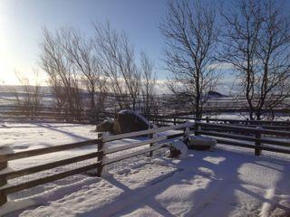 Mill Cross Farm - 952350 - photo 9