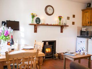 Mr McGregors' Cottage - 954949 - photo 6