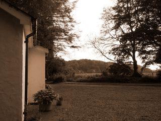 Mr McGregors' Cottage - 954949 - photo 5