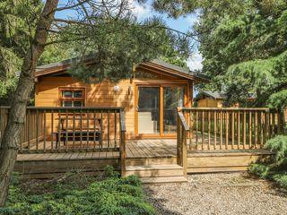 Pine Lodge - 956056 - photo 2