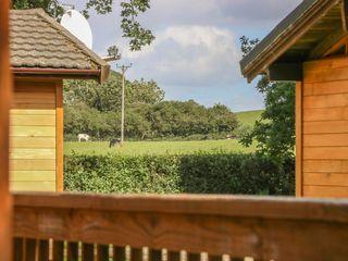 Pine Lodge - 956056 - photo 3