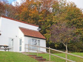 Manorcombe 29 - 959919 - photo 4