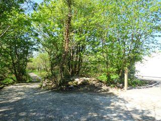 Hidden Gem Cottage - 960595 - photo 9