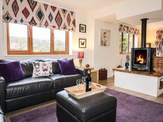 Bryony Cottage - 960707 - photo 5