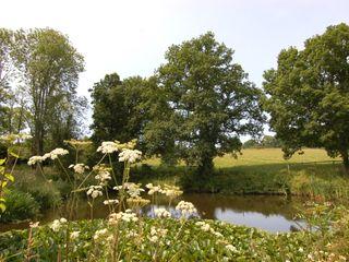 Breaches Barn - 965776 - photo 9