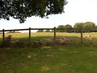 Breaches Barn - 965776 - photo 10