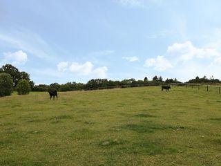 Breaches Barn - 965776 - photo 31