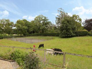 Breaches Barn - 965776 - photo 33