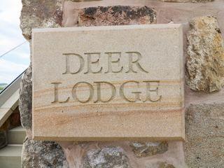 Deer Lodge - 978888 - photo 2