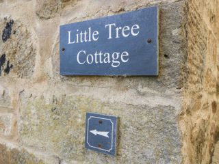 Little Tree Cottage - 980900 - photo 2