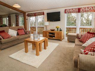 Cedar Lodge - 981289 - photo 4