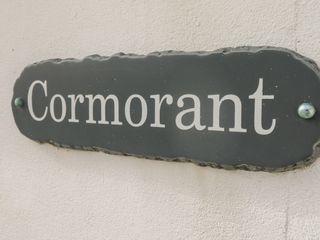 Cormorant - 982490 - photo 3