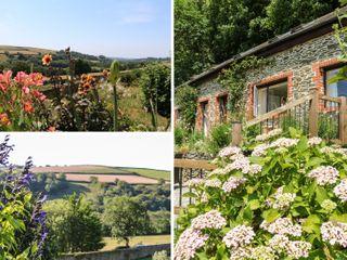 Rose Cottage - 986323 - photo 2
