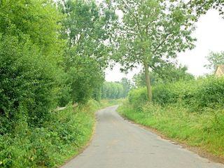 Tagmoor Hollow - 988661 - photo 10