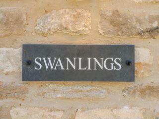 Swanlings - 988833 - photo 4