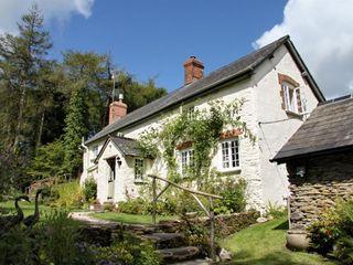 Lower Goosemoor Cottage - 988871 - photo 2