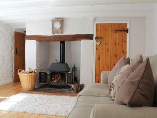 Lower Goosemoor Cottage - 988871 - photo 9