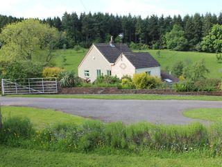 Rose Tree Cottage - 988872 - photo 2