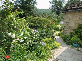 Neathwood Cottage - 988975 - photo 3