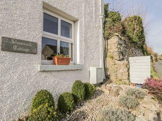 Shamrock Cottage - 990172 - photo 2