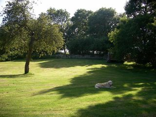 Coombe Orchard - 994113 - photo 8