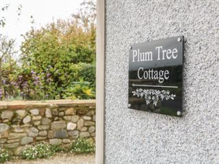 Plum Tree Cottage - 996711 - photo 3