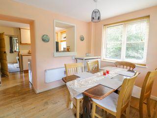 Dyfi Cottage - 997792 - photo 5