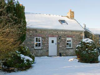 Ann Perrots Cottage - 999228 - photo 10