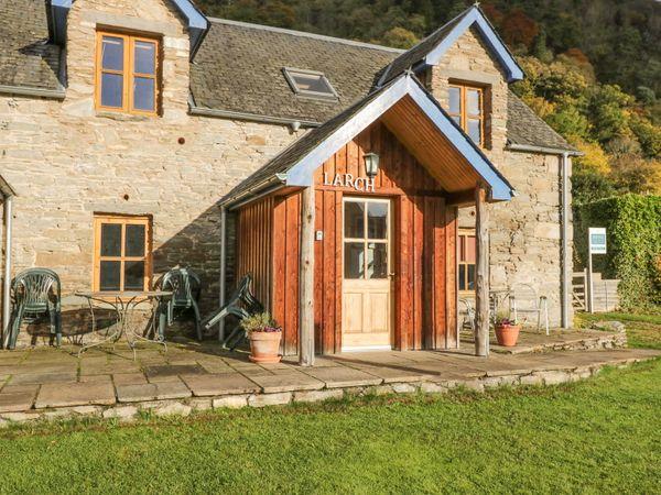 Larch Cottage - Scottish Lowlands - 21598 - photo 1