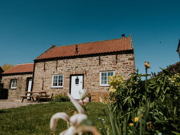 The Bothy - Yorkshire Dales - 937495 - photo 1
