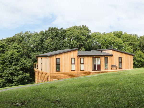 Willow Lodge - Shropshire - 960722 - photo 1