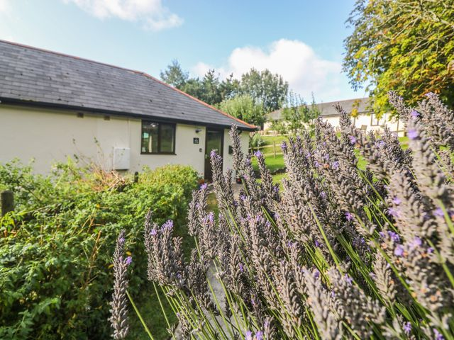 Hazel Cottage - 1007510 - photo 1
