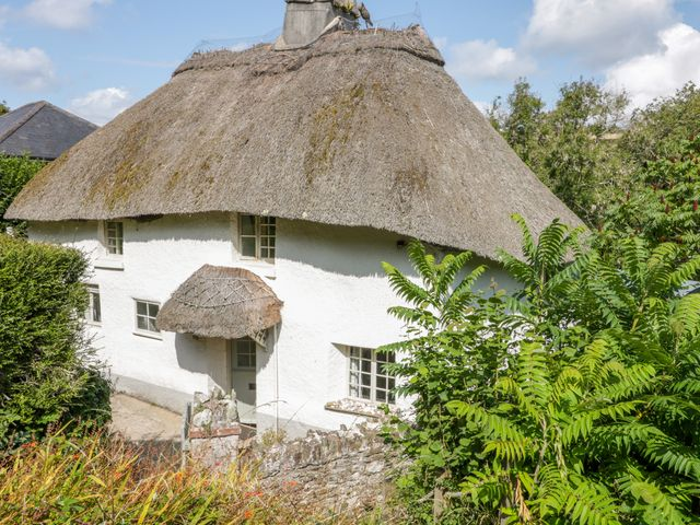 Elworthy Cottage - 1017060 - photo 1