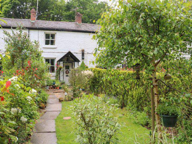 Buddleia Cottage - 1019843 - photo 1