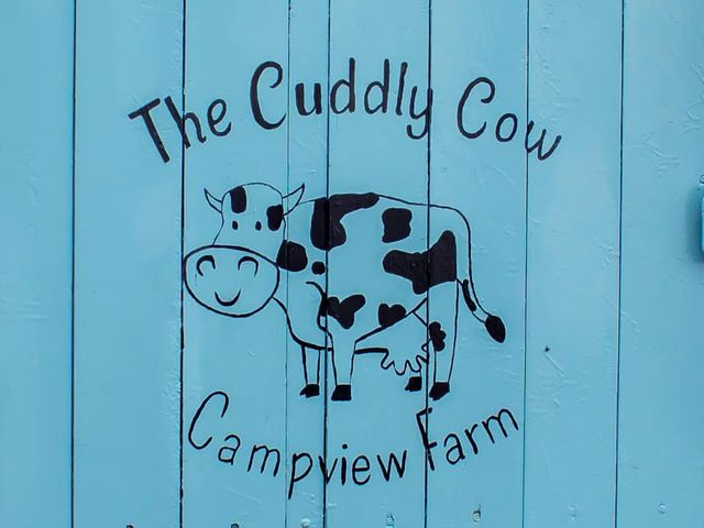 The Cuddly Cow - 1063603 - photo 1