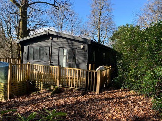 Tree Lodge - 1068886 - photo 1