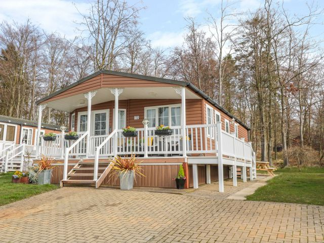Betty's Lodge - 1076988 - photo 1