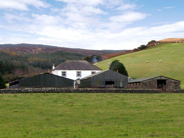 Homestone Farm - 3729 - photo 1