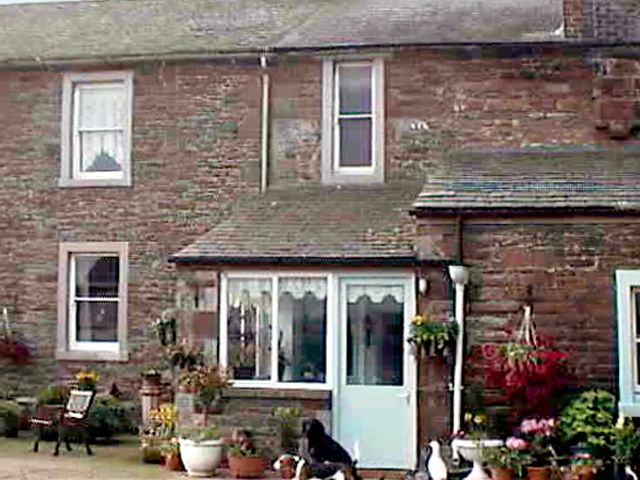 Foxgloves Cottage - 507 - photo 1